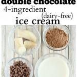 Double Chocolate 4-Ingredient (Dairy-Free) Ice Cream