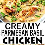 Creamy Parmesan Basil Chicken Recipe
