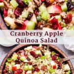 Cranberry-Apple-Quinoa-Salad